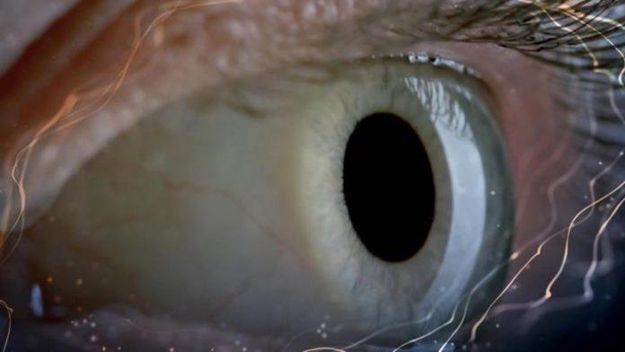 Conheça tudo sobre Consciência, nova série do canal Curta! 1