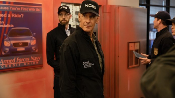 NCIS: New Orleans | 5ª temporada da série termina nesta quarta no A&E 1
