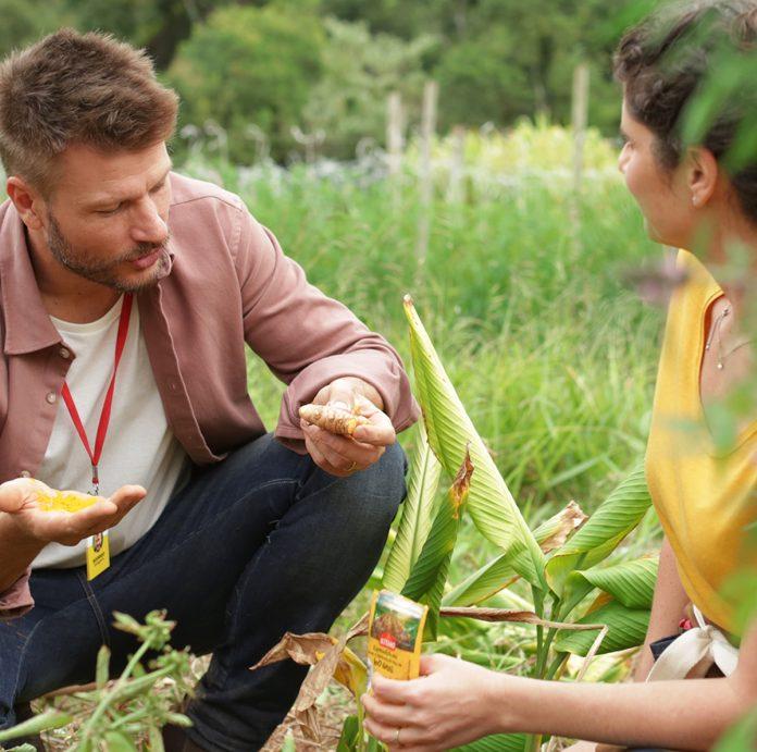 Rodrigo Hilbert estrela documentário de Kitano sobre cultivo de temperos 1